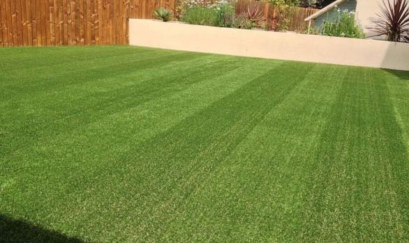Artificial Grass - Project 3